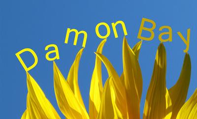 Sunflower Namecard