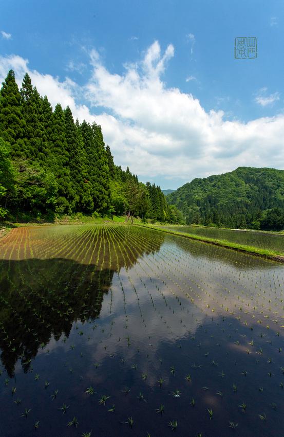Perfect reflections _0683 hanko