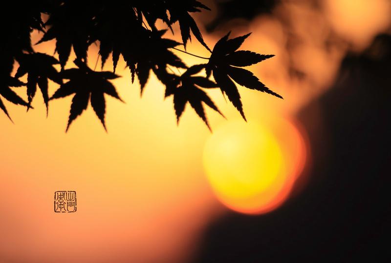 Red hot Sun Dfraw _0373 hanko