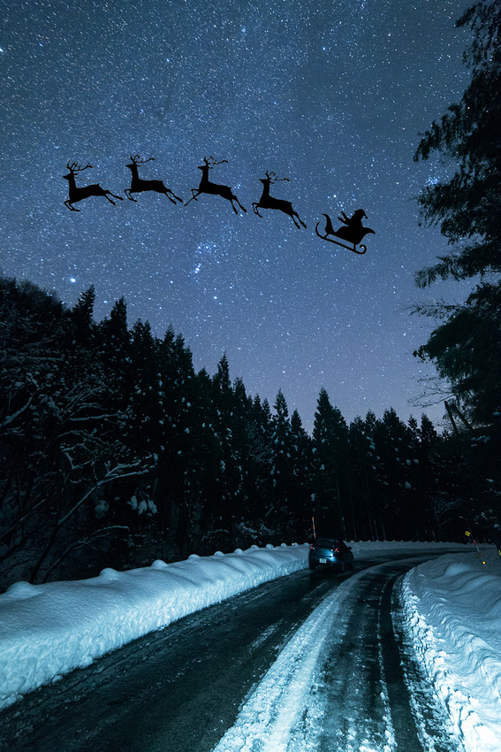 Himeji-Reindeer--_6945-Websmall