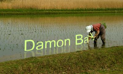 Rice Planting namecard